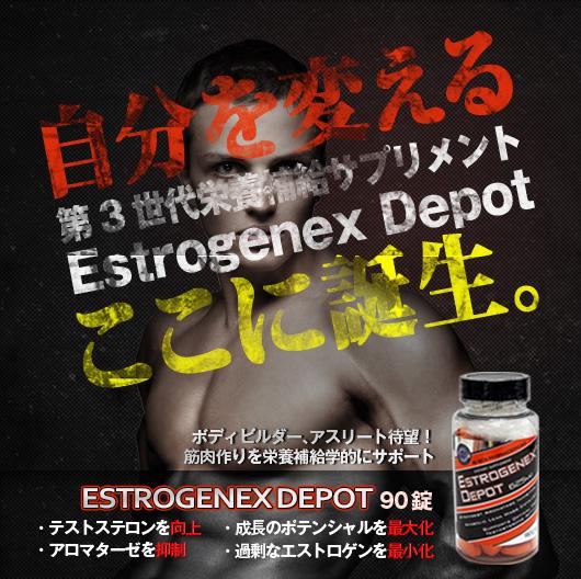 EstroGenexDepot625mg90錠 Hi-Tech社の第3世代栄養補給サプリメント
