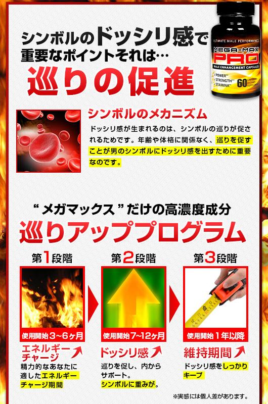 ペニスを大きくする重要なポイントそれは…血流量の増加
