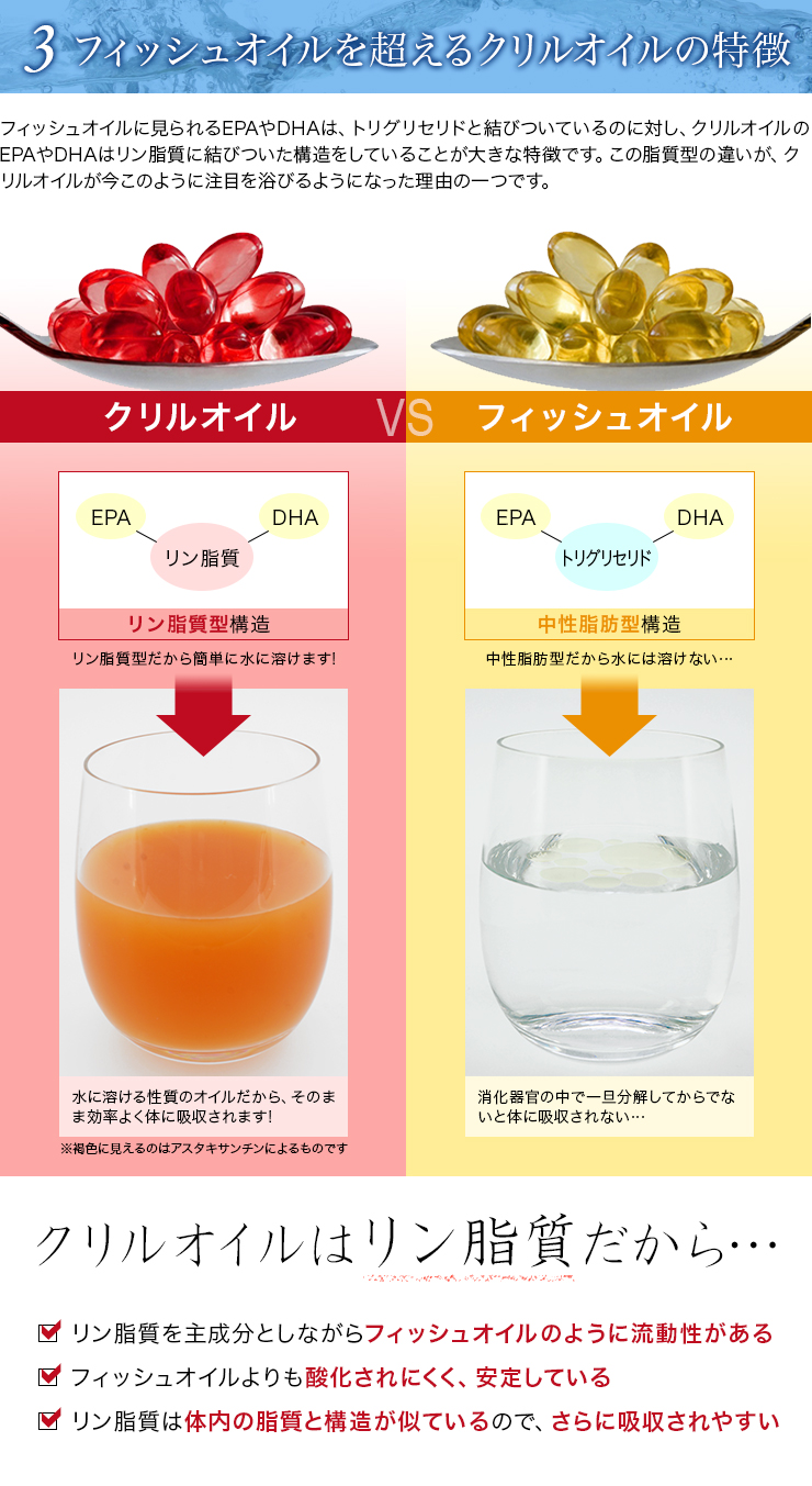 クリルオイル流(Krill Oil RYU)